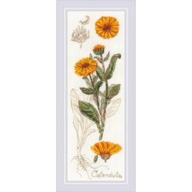 Riolis keresztszemes készlet - Calendula