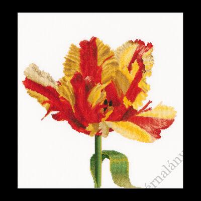 Piros - sárga papagáj tulipán - keresztszemes készlet