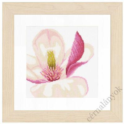 Magnólia virág II. keresztszemes készlet