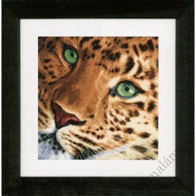 Leopárd keresztszemes készlet