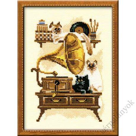 Cica gramofonnal