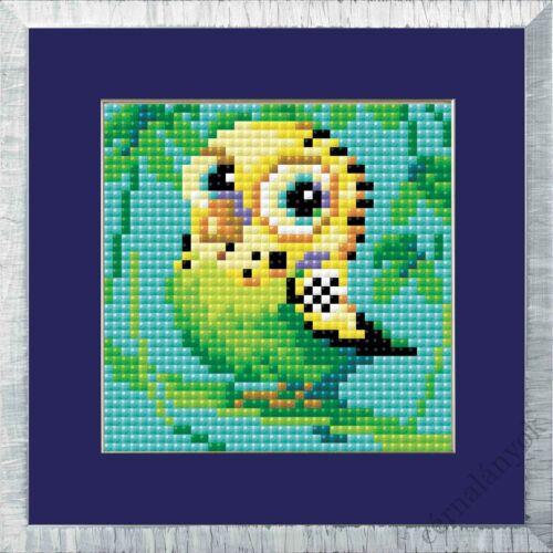 Diamond Mosaic készlet - Papagáj
