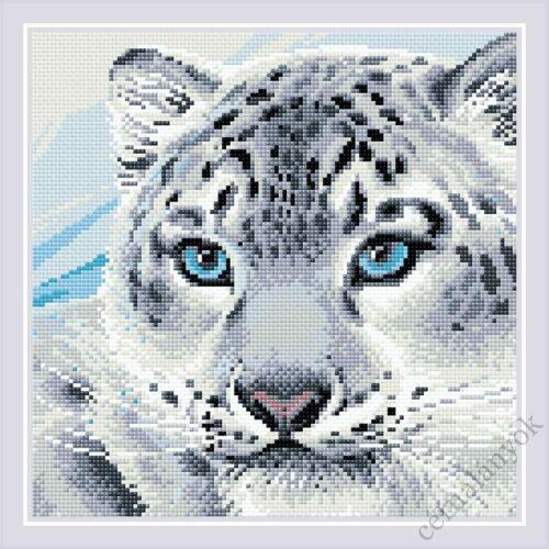 Diamond Mosaic készlet - Hópárduc