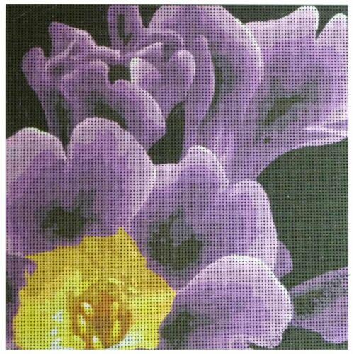 Lila virág 3.