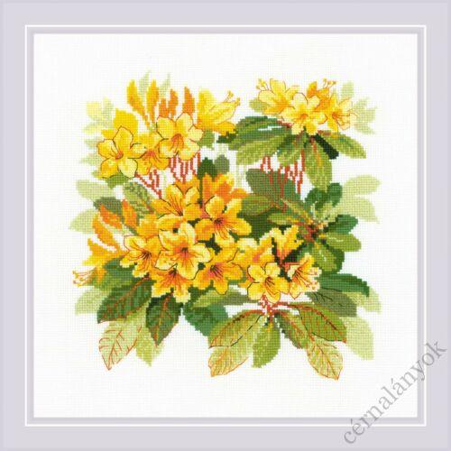 Rododendron - Riolis keresztszemes készlet