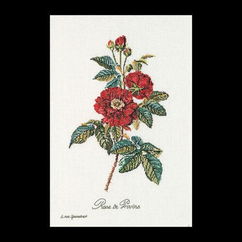 Rose van Spaendonck - keresztszemes készlet