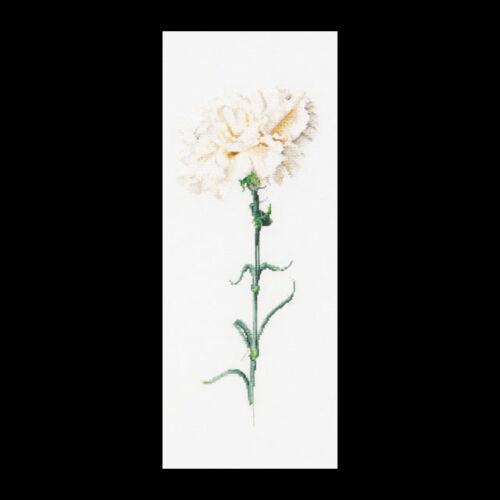 Szegfű - fehér keresztszemes készlet