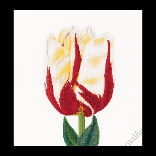 Lángoló kései tulipán - keresztszemes készlet