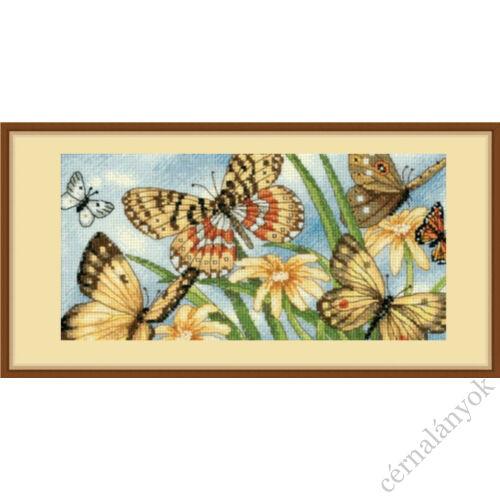 Pillangós - keresztszemes készlet