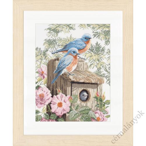 Lanarte keresztszemes készlet - Kerti kék madarak
