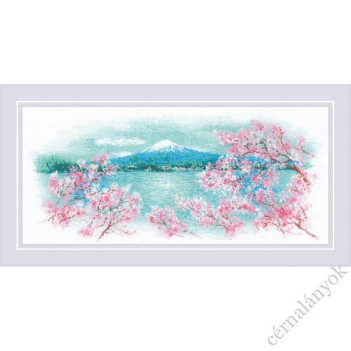 Sakura. Fuji