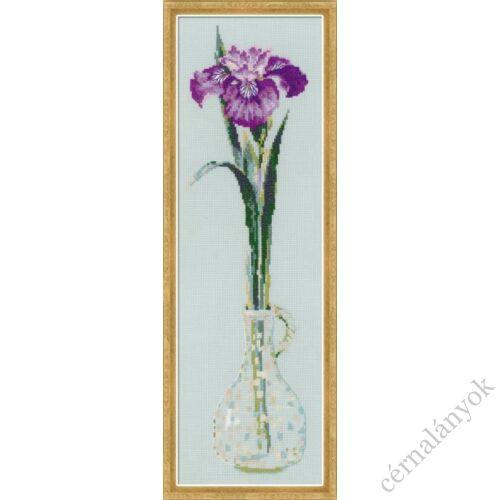 Virágok királya - írisz