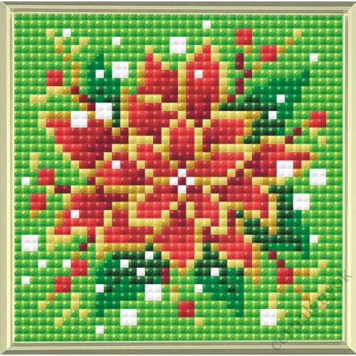 Diamond Mosaic készlet - Mikulásvirág